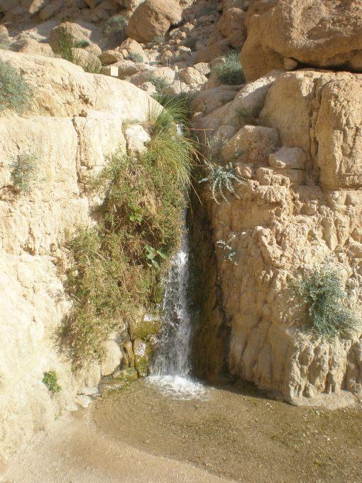 Waterfall at En Geti